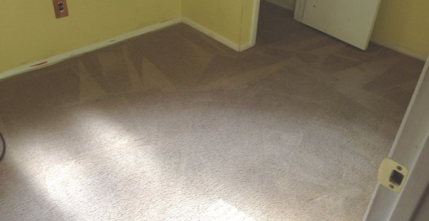 aftercarpets3-625x322