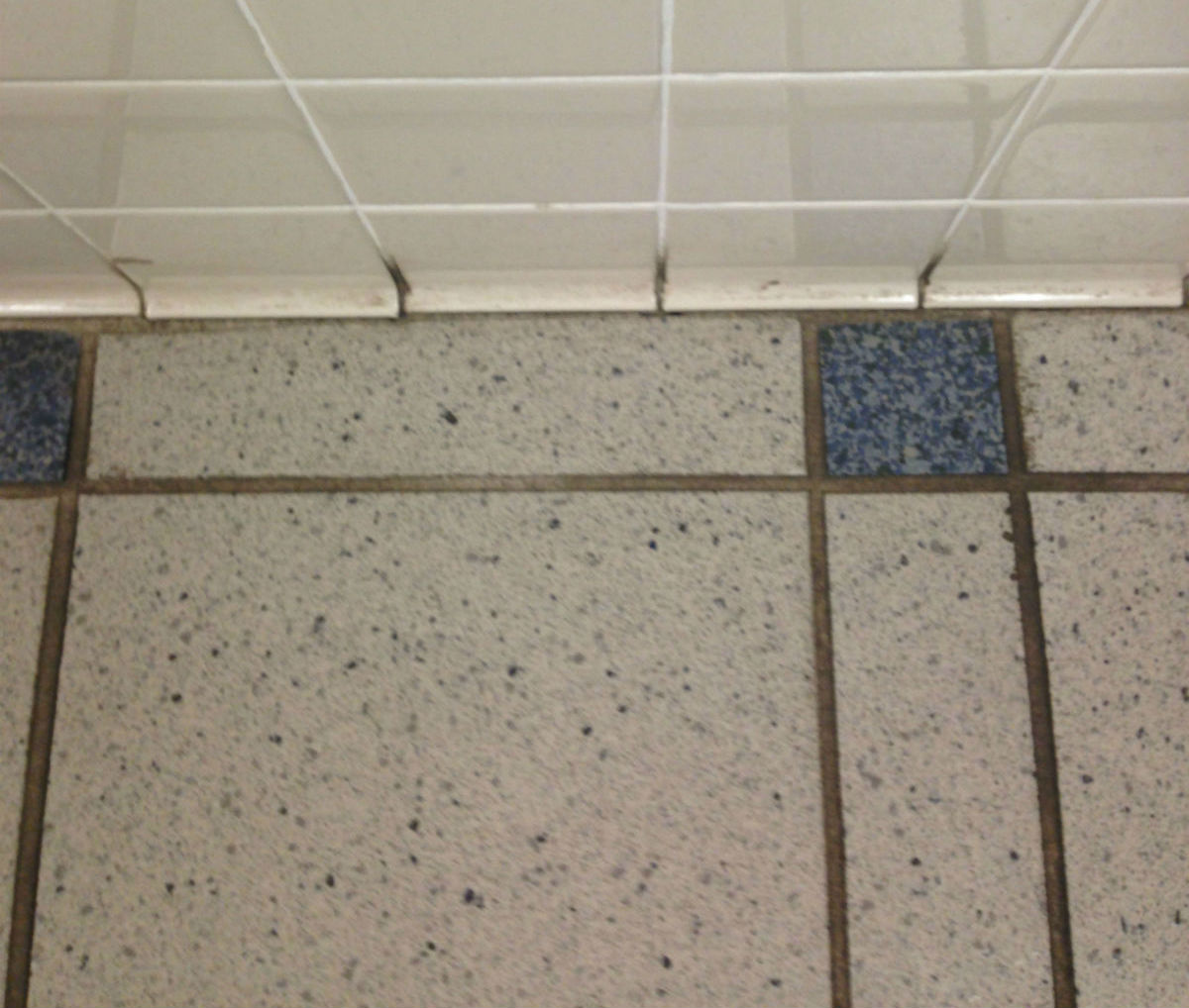 grout-2_before-1
