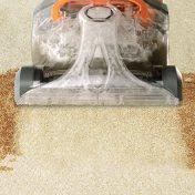 nj carpet cleaning services