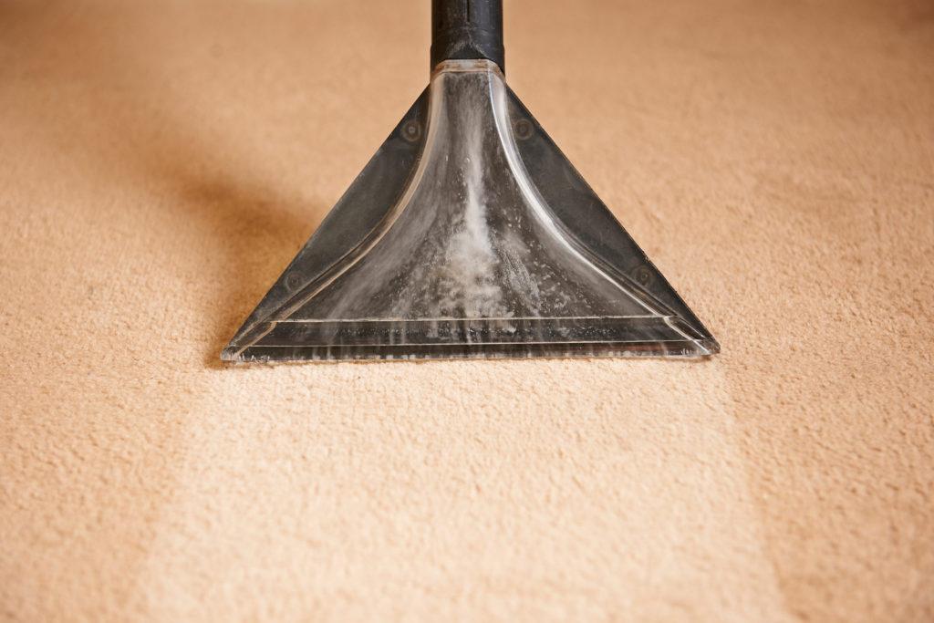 bigstock-Professionally-Cleaning-Carpet-109216523-1024x683