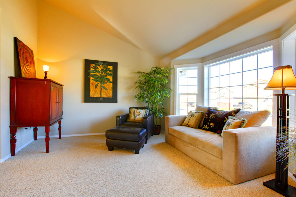 bigstock-Small-Cozy-Living-Room-57136478-1024x682