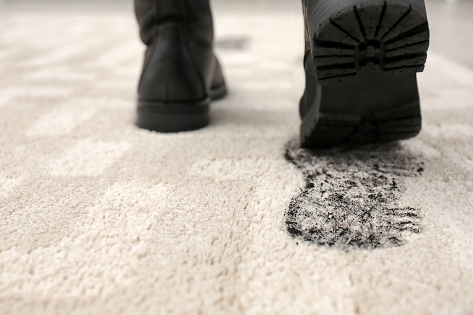 Professional Carpet Cleaning - Is it on Your Spring Cleaning Checklist?